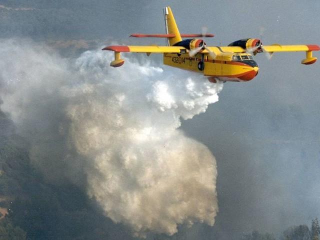 Emergenza incendi, 11 canadair e 4 elicotteri per spegnere le fiamme. Domati finora 9 incendi