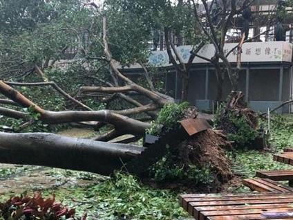 Il gemmologo Roby Spagnolo filma il temibile tifone Mangkhut