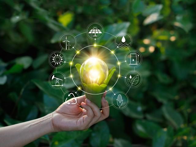 Incentivi rinnovabili FER 1: vantaggi e limiti