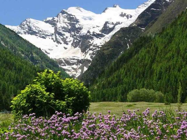Preserviamo i Parchi Nazionali italiani
