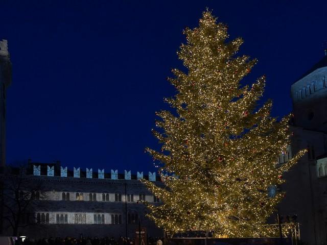 La città accende il Natale e l'albero in piazza: guarda il video