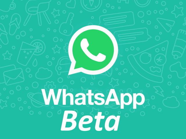 WhatsApp Beta ha aggiunto i messaggi a scadenza nei gruppi