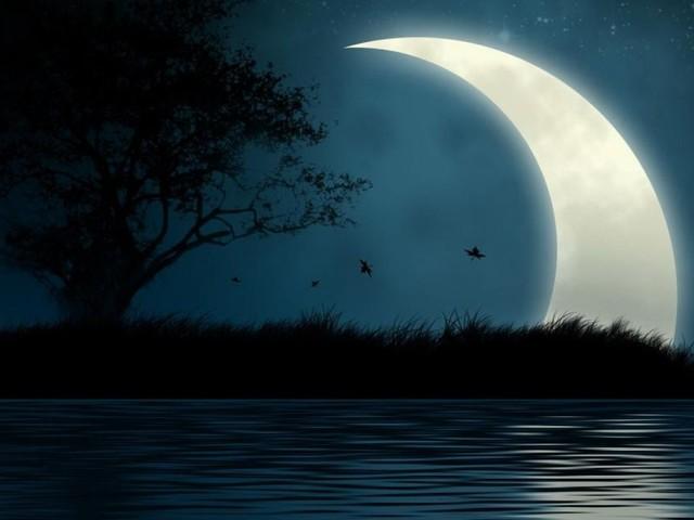L'oroscopo di domani sabato 19 ottobre, primi sei segni: la Luna 'sposa' il Cancro