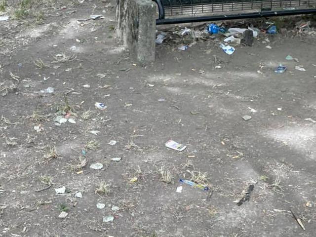 Commessaggio, rifiuti al parco Navarolo
