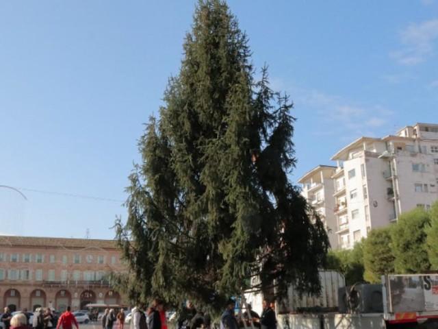 Natale a Civitanova: sabato 7 dicembre si entra nel vivo con l'accensione dell'albero e la pista di ghiaccio