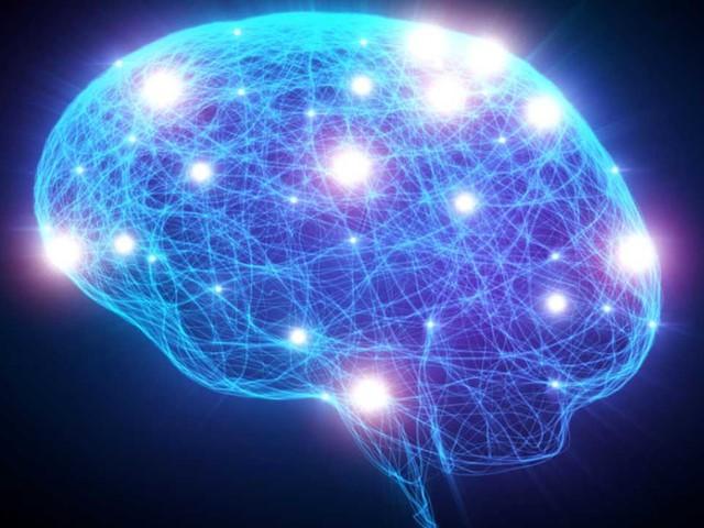 Alzheimer: ricercatori italiani scovano molecola che blocca la malattia