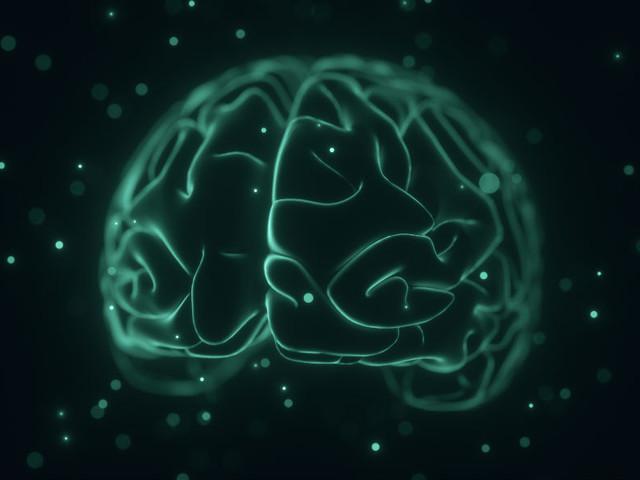 Herpes e Alzheimer: forse c'è un collegamento