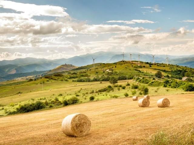 Eolico, oltre metà delle turbine italiane giungerà a fine vita operativa entro 10 anni
