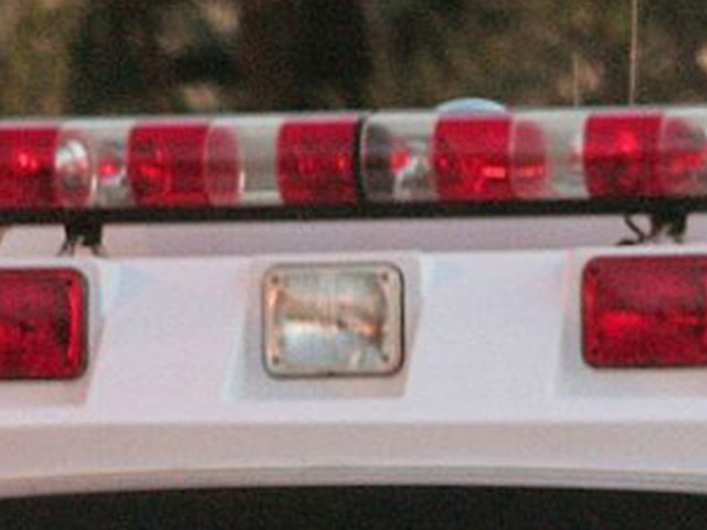 1-Year-Old Boy Seriously Injured By Falling Tree In Townsend