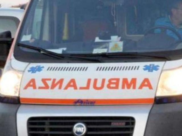 Lecce, bimba azzannata alla gola da un cane: non è in pericolo di vita