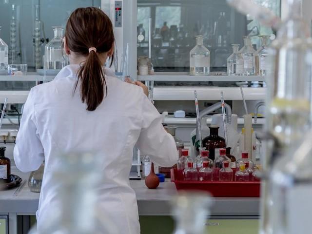 Coronavirus Marche, 111 i positivi nelle ultime 24 ore su 794 tamponi analizzati: dati in miglioramento