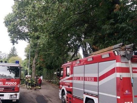Roma, auto perde il controllo e si schianta contro un palo: muore giovane di 28 anni