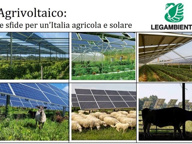 Agrivoltaico: un nuovo modello con le aziende agricole al centro. La proposta di Legambiente a governo e parlamento
