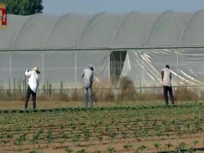 Imprenditore agricolo arrestato: sparava ai braccianti per farli lavorare di più