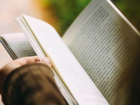 """È morto Harold Bloom: critico letterario, creò il """"Canone occidentale"""""""