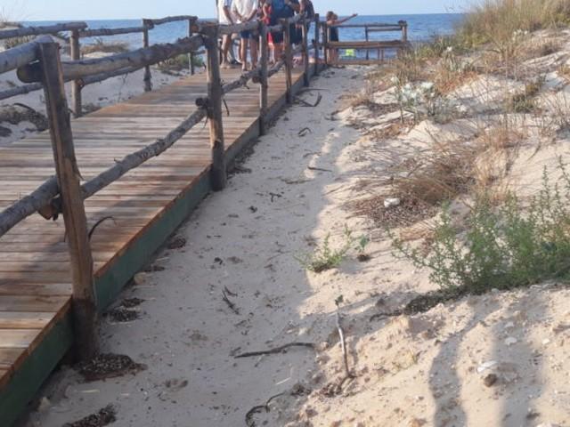 Alghe, inaccessibilità dei disabili e lungomare inadatto al passeggio: degrado a Torre Rinalda