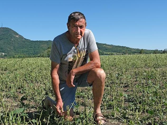 Maltempo, gli agricoltori chiedono i danni