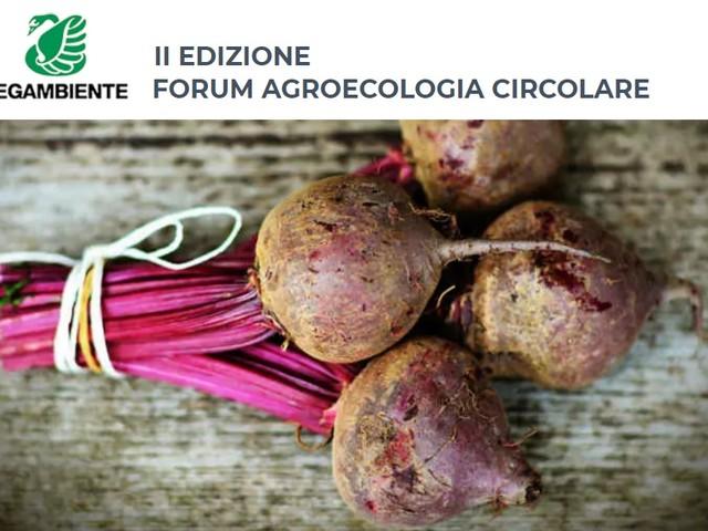 Agroecologia circolare: coltivare biodiversità e innovazione per far crescere il Green Deal europeo