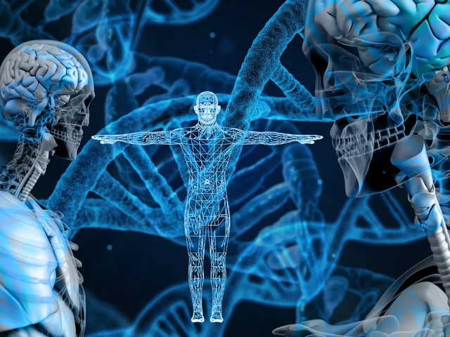 Le bimbe cinesi geneticamente modificate potrebbero avere un cervello migliorato