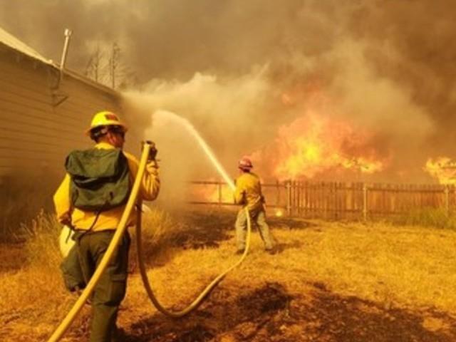 La lotta della California per salvare le sequoie giganti dagli incendi