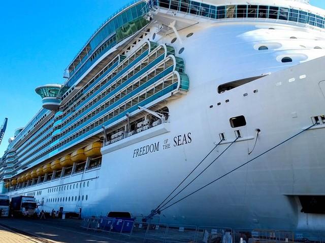 Usa, bambina di 18 mesi precipita da una nave da crociera: è morta poco dopo in ospedale