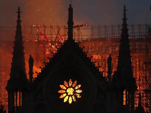 Il tifo deluso e il dolore per Notre-Dame. Tutti i pensieri del prof. Caudano
