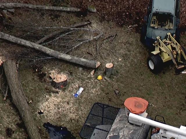 26-Year-Old Tree Worker Killed In Sudbury