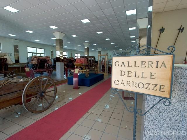 A Roma - Tutte le auto del Museo della Motorizzazione Militare - FOTO GALLERY