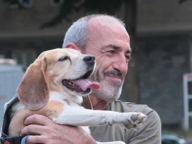 La ricerca, i cani sono sempre più longevi: ora uno studio lo certifica