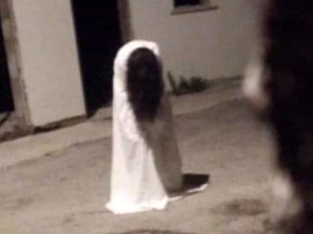 """La macabra sfida del 'Samara Challenge' arriva in Romagna: """"Gioco pericoloso"""""""