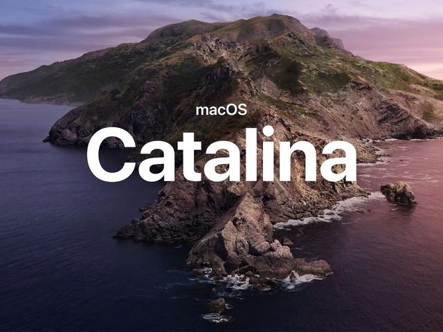 Un video mostra in azione macOS Catalina su un iPad Pro 2020. Come se la sarà cavata? (video)