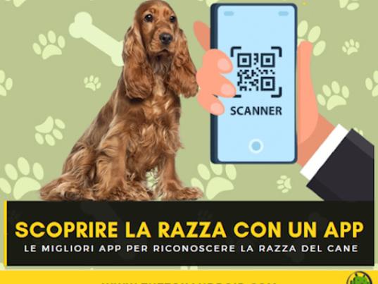 Riconoscere la razza del cane con un app: Ecco le migliori 6 app Dog Scanner per Android