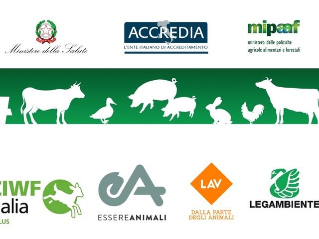 Certificazione benessere animale: male la prima. A rischio gli obiettivi e la corretta informazione ai cittadini
