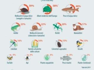 La natura in Europa è in grave e continuo declino