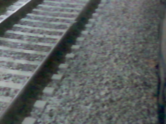 """Fra le dieci peggiori linee ferroviarie d'Italia, due riguardano la Puglia Legambiente: ci sono la Reggio Calabria-Taranto e la Bari-Corato-Barletta fra le """"croci"""", soprattutto per i pendolari"""