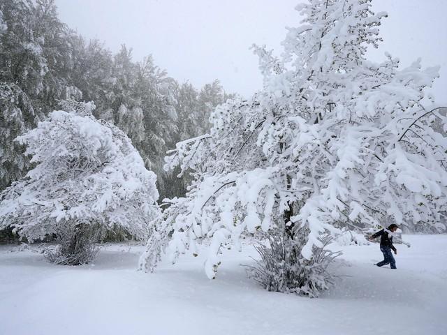 Meteo, Maggio pazzo: freddo record, in Corsica una nevicata mai vista [FOTO e VIDEO]