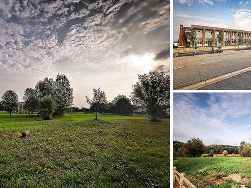 Parco Marconi, fiaccolata on line: un selfie, un pensiero per salvare l'area