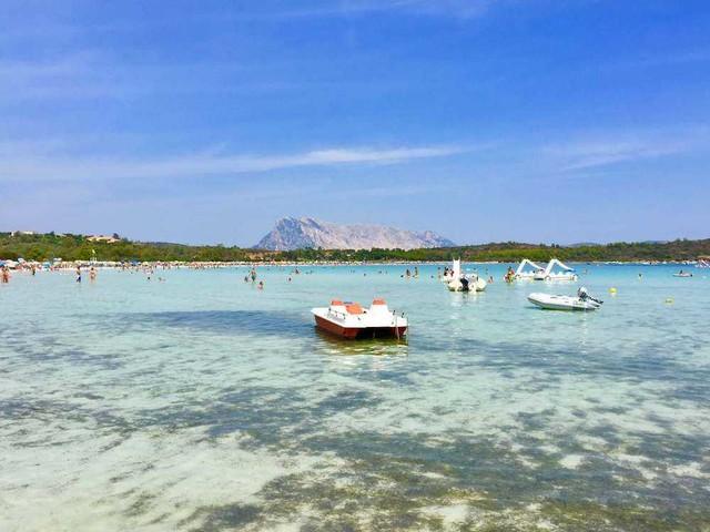 Cala Brandinchi, in Sardegna: tutto sulla piccola Tahiti di San Teodoro