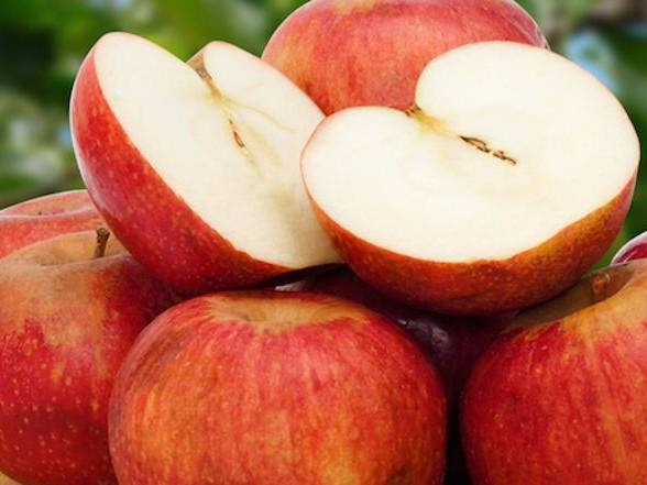 Dieta Settimanale Per Dimagrire : Dieta delle mele menù settimanale per dimagrire con le mele rosse