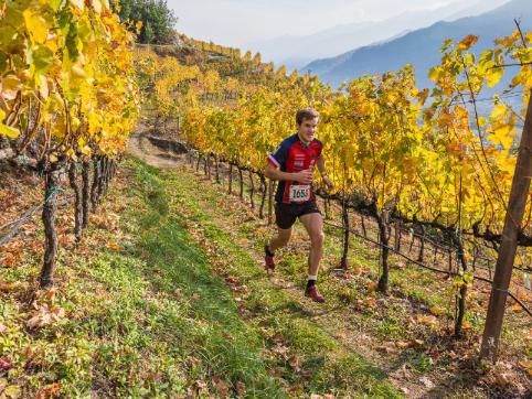 WineTrail2019: è già caccia al pettorale