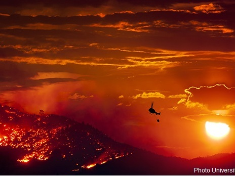 Mega incendi, Trump smentito da un nuovo studio: è il cambiamento climatico ad aumentare il rischio