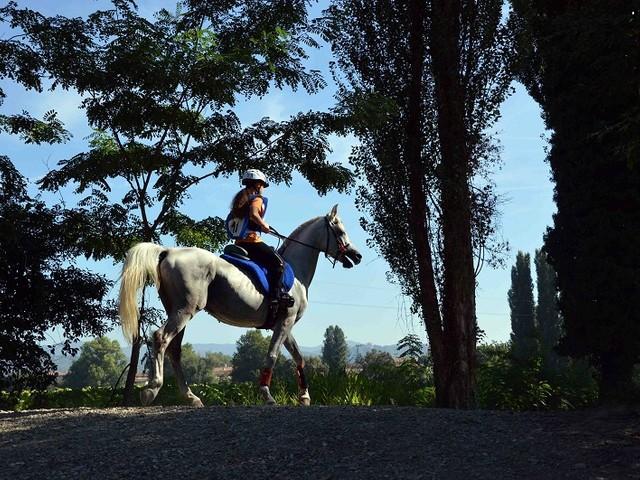 A cavallo lungo il Tevere a prova di Covid