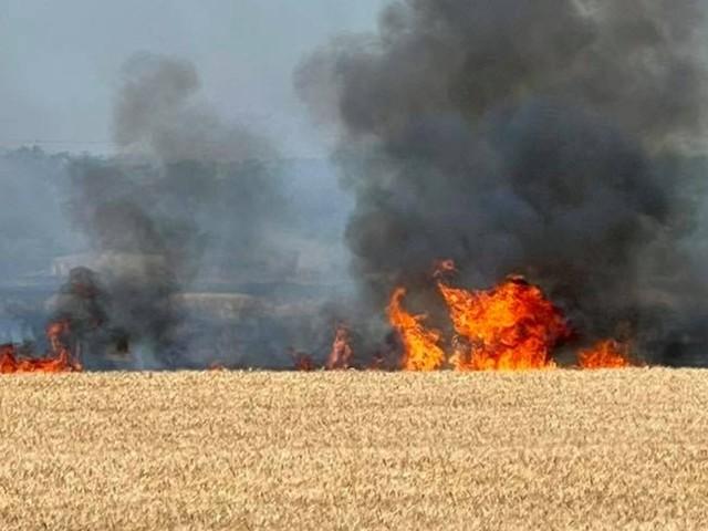Fano: Campo in fiamme vicino alla superstrada, sfiorate due abitazioni [FOTO e VIDEO]