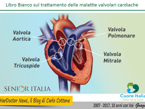 Libro Bianco sul trattamento delle malattie valvolari cardiache