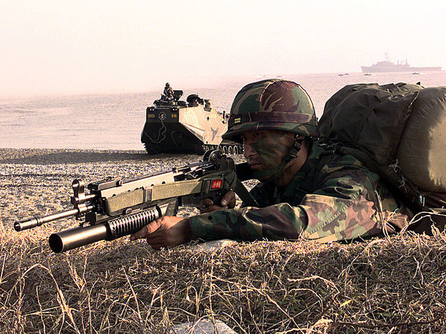 Corea del Sud, cecchini al confine per uccidere i cinghiali