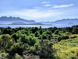 Dal Consiglio Ue via libera alla strategia per la biodiversità per il 2030