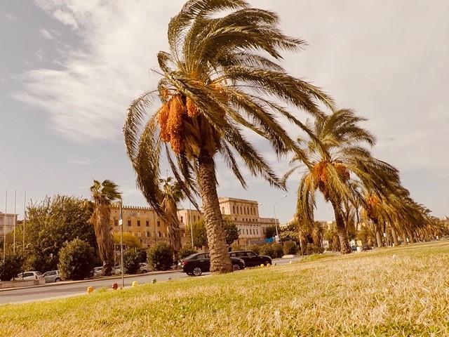 Lo Scirocco sferza Palermo, domani ulteriore peggioramento (IMMAGINI)