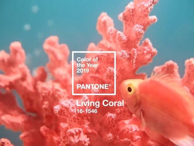 Pantone 2019, sarà l'anno del Living Coral