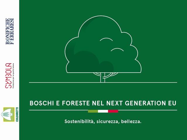 Boschi e foreste e Next Generation EU. Italia seconda in Europa per copertura forestale