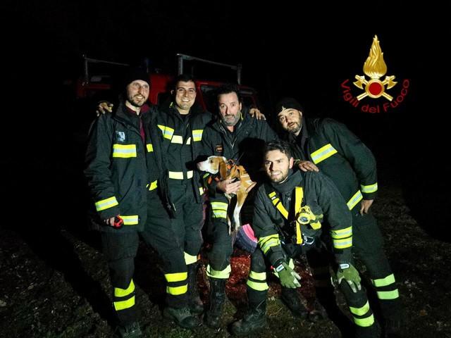 Cagnolina cade in un burrone | Lisa salvata dai vigili del fuoco